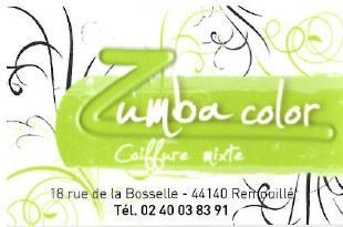 logo-zumba-color